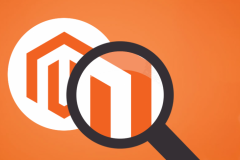 magento_code_auditing